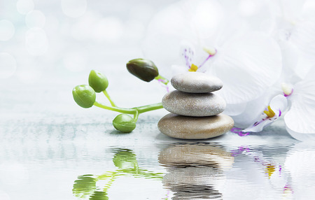 Spa still life with massage stones,white orchid on water reflection Stockfoto