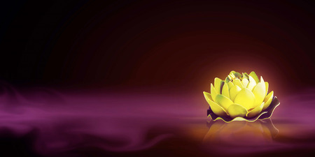miracle leaf: Dreamy magic lotus flower in the foggy water Stock Photo