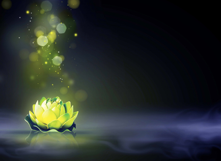 Dreamy magic lotus flower with sparkle in the water