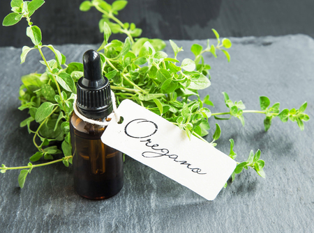 Oregano oil bottle with label and oregano herb bunch Standard-Bild