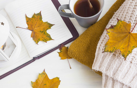 tea cosy: Autumn still life with lantern, notebook, autumn dried leaves, tea cup and cosy woolen sweaters