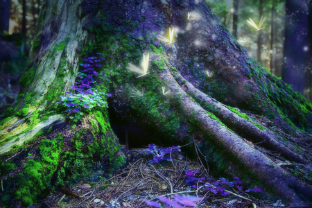 Magic surreal enchanted  forest with fireflies Stock Photo