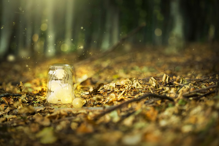 Magic fairy forest with fireflies and a bright lamp, mysterious lantern in a surreal forest with dried leaves and dreamy lights