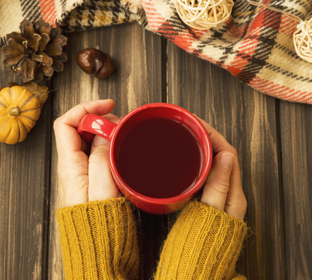 Woman hands holding cup of hot chocolate , autumn cosy setting top view Stock Photo