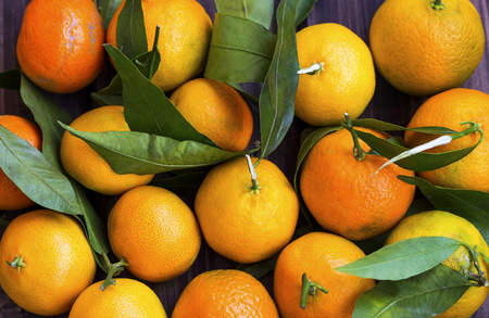 Top view of clementines or tangerines heap, citrus fruits with green leaves