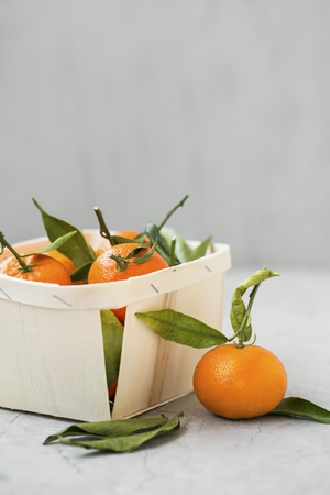 Fresh clementines citrus fruits in a basket, healthy organic clementines with leaves on grey concrete background copy space