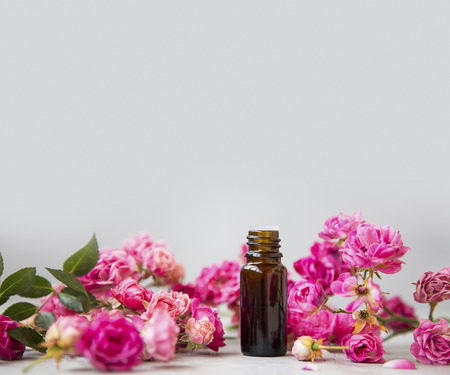 Rose oil. Spa and aromatherapy rose flowers essential oil bottle with copy space Standard-Bild - 118387832