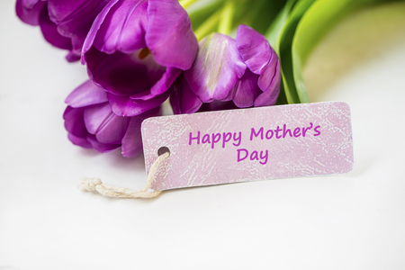 Spring tulips bouquet with Happy mother's day card label , women's or mother's day holiday greeting with label card, beautiful spring holidays card with purple tulips flowers Standard-Bild - 118387911