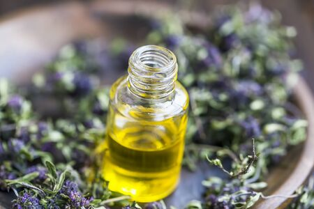Thyme essential oil bottle with thyme flowers, beauty and aromatherapy treatments ingredients, natural botanical herbs, alternative medicine