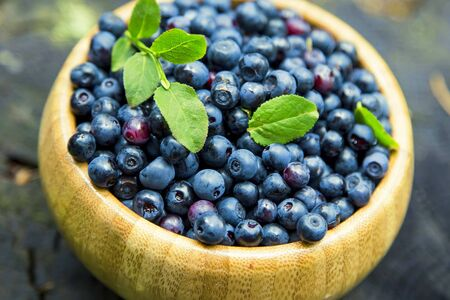 Organic blueberries fruits, fresh healthy bio berries from the forest, freshly picked , blueberries bowl