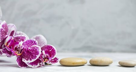 Spa still life setting with orchid flower and massage stones