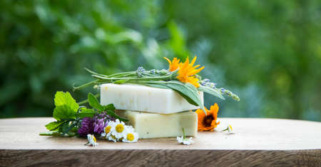 Natural soap with oil bottles and herbs, spa and wellness products