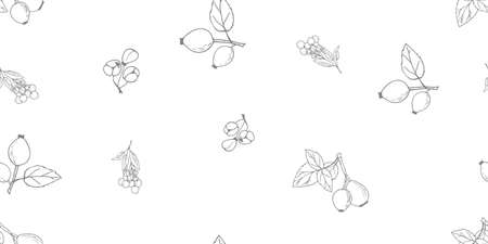 Autumn seamless pattern of hand drawn Rose hip and other berries. Clip art for web card, poster, cover. Good for textile, wallpapers, gift wrap and scrapbook. Vector illustration. Vektorgrafik