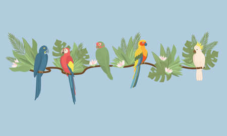 Tropical parrots set with palm and monstera leaves, Exotic flowers. Trendy Cartoon Vector illustration. Good for web and print
