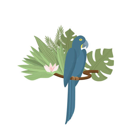 Tropical parrot with palm and monstera leaves, exotic flower. Exotic blue bird. Trendy Cartoon Vector illustration. Isolated on white. Good for web and print