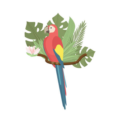 Tropical parrot Ara with palm and monstera leaves, exotic flower. Exotic colorful bird. Trendy Cartoon Vector illustration. Isolated on white. Good for web and print