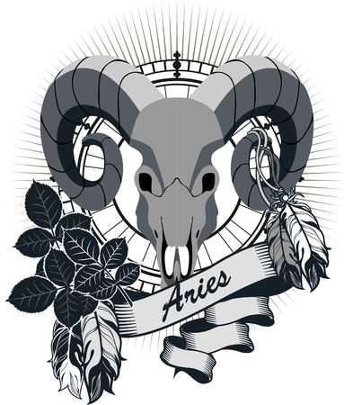 rams horns: portrait of a rams skull with horns zodiac sign for horoscope and astrological predestination