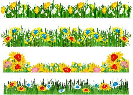 daisyflower: vector illustration of the composition of the grass and flowers isolated Illustration