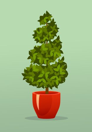 Vector illustration of a garden seedlings a tree in a box in a pot of retro postcard