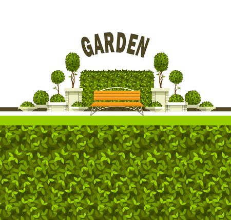 Vector illustration of a scene of a public recreation park garden plants of a bench, grass cover, box