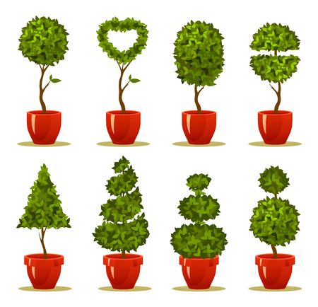 Vector illustration of a garden seedlings, a tree in a box and pot of retro postcard