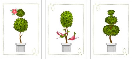 vector illustration trees in pots of topiary on a white background in a set of three greeting cards Illustration