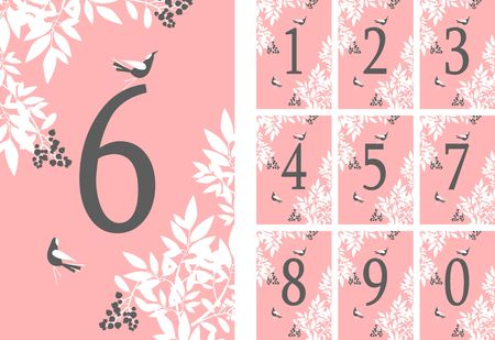 vector illustration set of vertical cards with numbers decorated with eucalyptus leaves berries birds