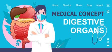medical concept banner internal organs