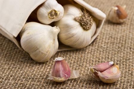 immunity: Freshly harvested garlic on burlap background Stock Photo
