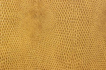 imitation: Snake leather skin imitation