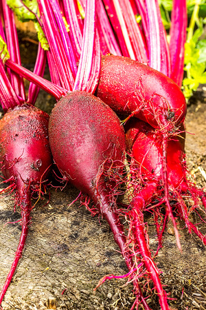 beets: Beets on wooden background. closeup