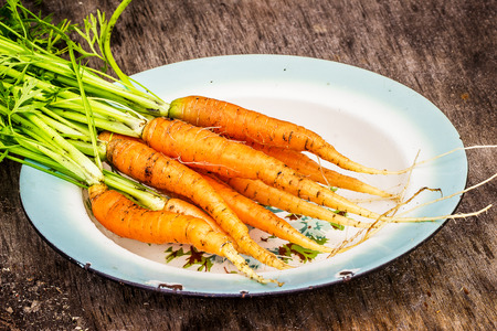 bundle: Plate with bundle of carrots on the wooden table