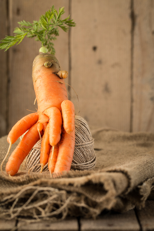 humor: carrots of unusual shape lies on a wooden table. seasonal concept