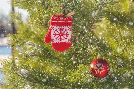 baby red mittens on winter pine tree. winter still life. Winter holiday composition Foto de archivo