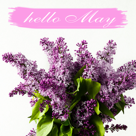 Hello May lettering card. Spring gentle lilac flowers