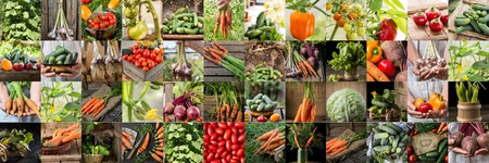 Collection with different color  vegetables. Healthy food background. Collage of vegetables. products of vegetable garden. Healthy vegan food