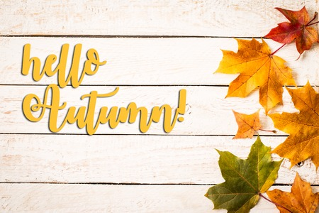 Autumn background with Hello Autumn letters and autumn leaves on the wooden background. Top view with copy space Reklamní fotografie