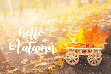 HELLO AUTUMN lettering card. maple leaves on a wooden cart. Autumn background concept. Maple, yellow foliage, wooden stump