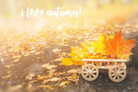 Autumn lettering card. maple leaves on a wooden cart. Reklamní fotografie
