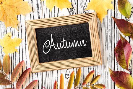 AUTUMN lettering card. Autumn seasonal flat lay photo Reklamní fotografie - 129263999