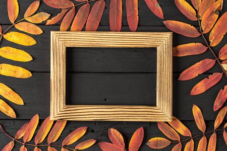 empty photo frame and colorful autumn leaves on black background Reklamní fotografie
