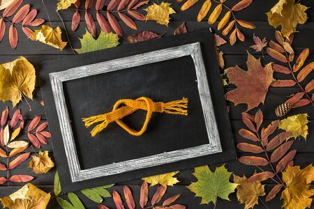 Creative Still Life Autumn Composition. Frame Made of autumn leaves and Scarf. Copy Space. Reklamní fotografie - 129264098