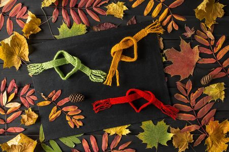 Creative Still Life Autumn Composition. Frame Made of autumn leaves and Scarf. Copy Space. Reklamní fotografie