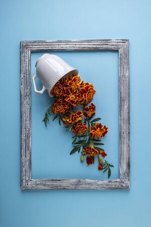 Flowers composition. Creative layout made of coffee or tea cup with marigold flowers on a blue pastel paper background
