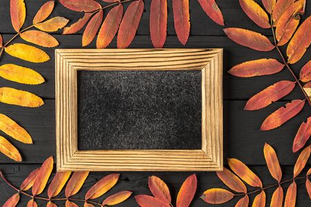 empty photo frame and colorful autumn dry leaves on black wooden background. Life cycle of fall leaf. Thanksgiving holidays concept. yellow and red autumn leaves. Top view, copy space