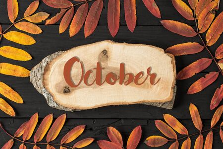 Autumn seasonal flat lay photo. AUTUMN lettering card. season banner template. Concept of the fall season Reklamní fotografie
