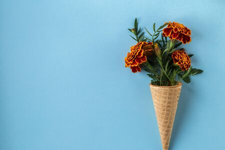 Flat lay Ice Cream Cone with of marigold flowers on pastel blue background, copy space. Flat lay, top view floral background. Minimalism fashion style