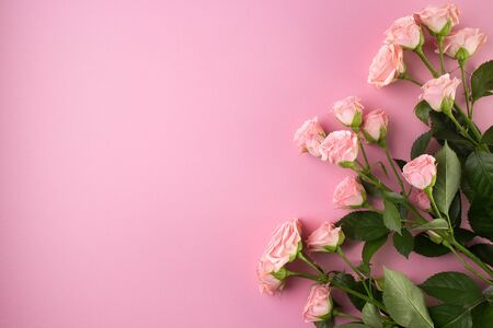 Flowers composition. Pink rose flowers on pastel pink background. Floral pink background with copy space. Flat lay, top view