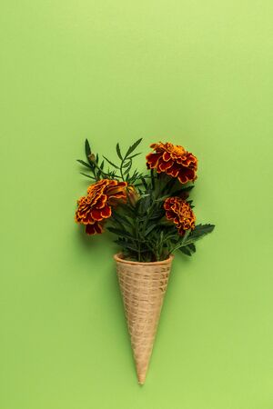 Flat lay Ice Cream Cone with of marigold flowers on pastel green background, copy space. Flat lay, top view floral background. Minimalism fashion style
