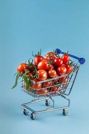 juicy tomatoes in shopping cart on blue paper background. Copy space.Trendy minimal style Reklamní fotografie